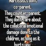 Co-parenting With a Narcissist 101, Part I
